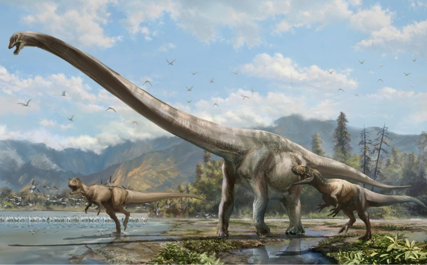 Qijianglong: Long-necked Dragon Roamed China 160 Million Years Ago