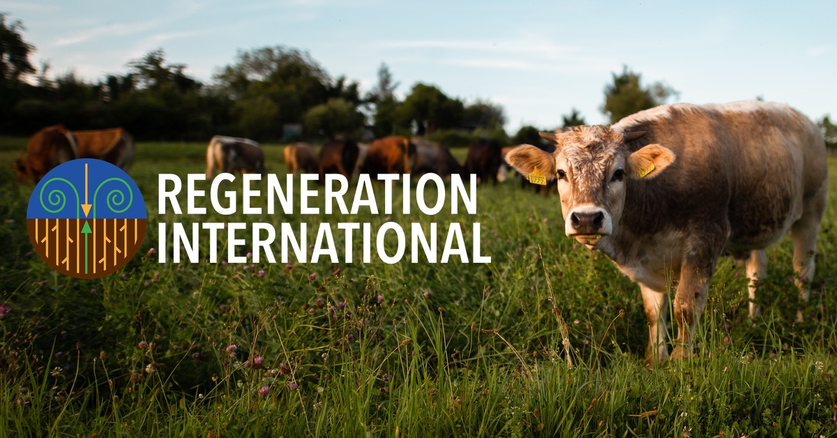 The Regenerative Ranching Racket