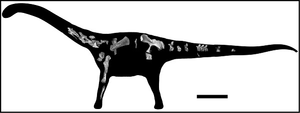 Rukwatitan Bisepultus: New Species Of Titanosaurian Dinosaur Found In Tanzania