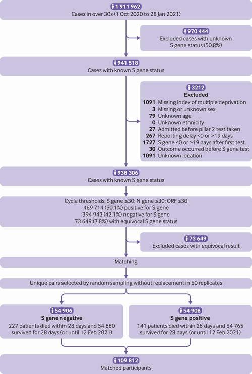 COVID-19 Variant B.1.1.7 Statistics Suggest Higher Mortality