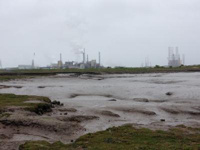 Sea Level Rise Threatens UK Coastal Wetlands By 2100