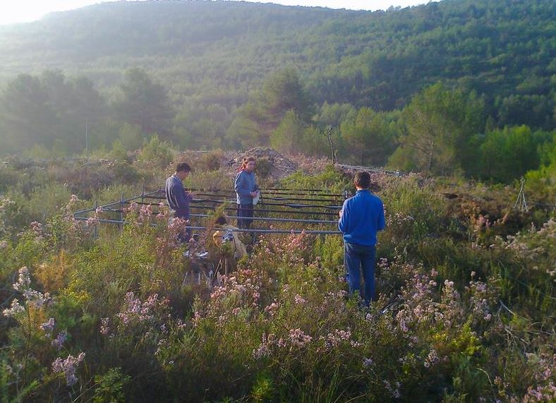 Predicting How Plant Species Might Respond To Climate Change
