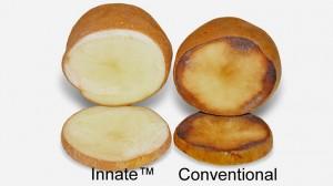 Simplot Innate GM Potato Gets USDA Endorsement