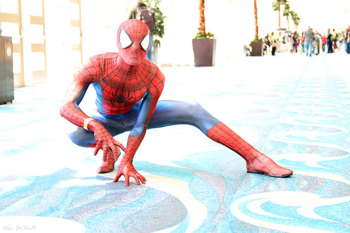 Spider-Man Webbing: How Many Calories Does It Take To Produce All That Silk?