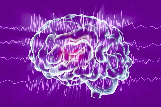 Can The Aidan Tree Be An Epilepsy Treatment?
