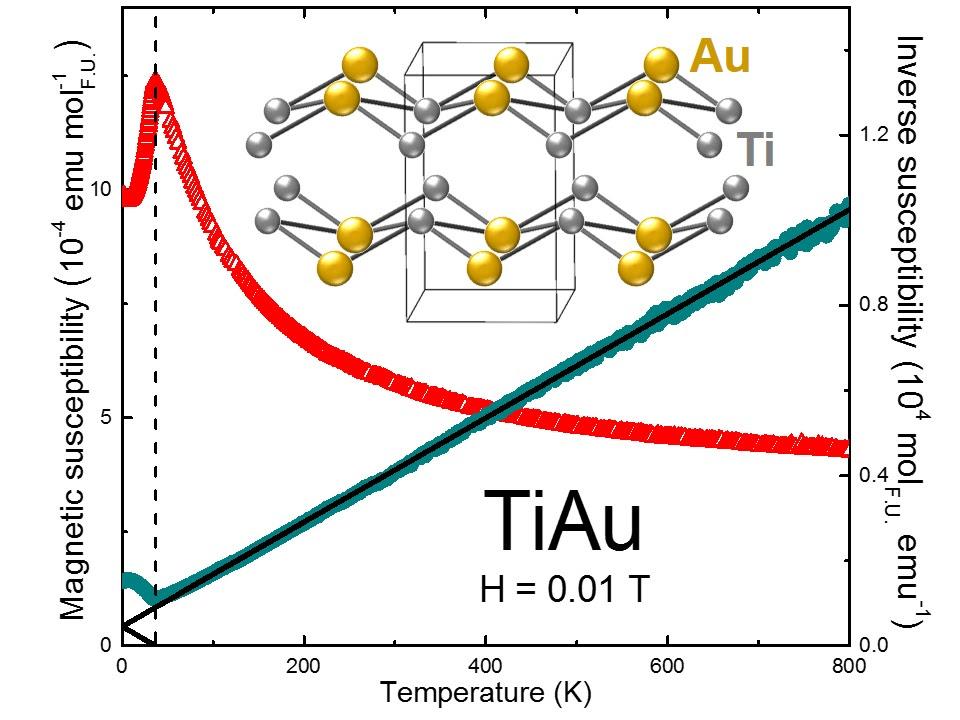 Non-magnetic Elements Form Unique Magnet