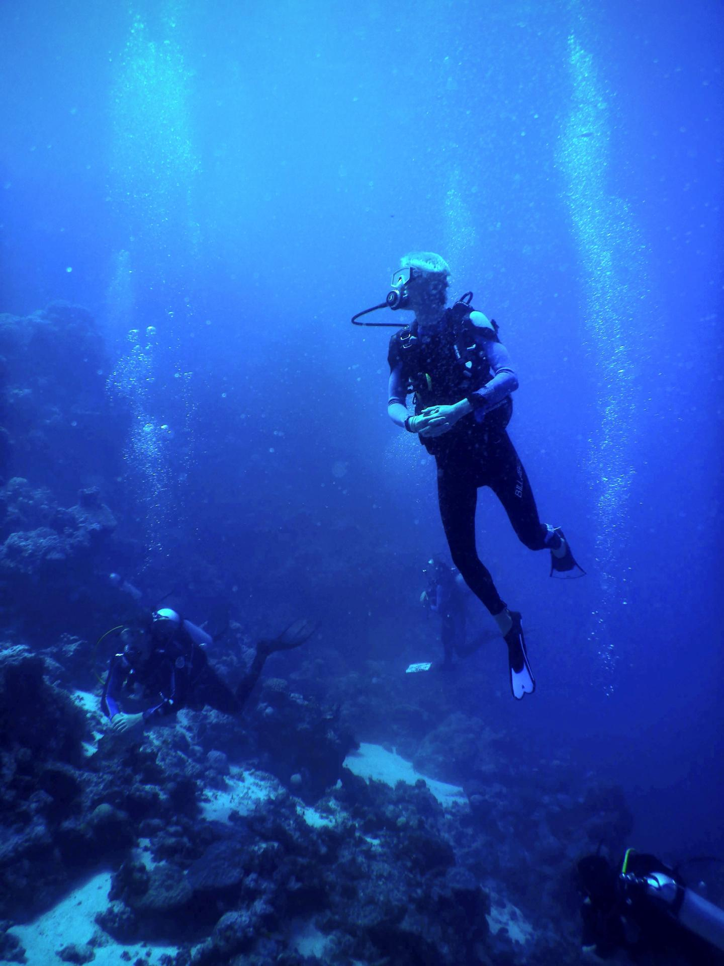 Environmental Scientists Need Better Emotional Support, Argue Marine Biologists