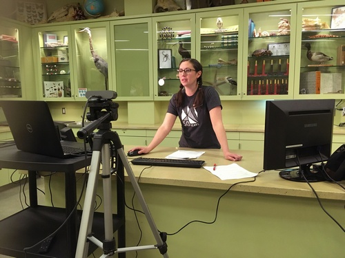 Natural History Museum of Utah: Research Quest Live Is Hosting Free Daily Classes For Kids