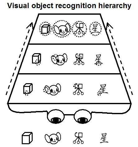 visual object recognition heirarchy