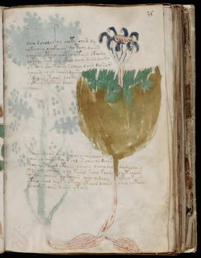 The Voynich Manuscript Unzipped
