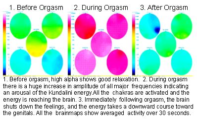 Brainmapping The Orgasm