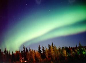 The Two Circuits Of Auroral Arcs