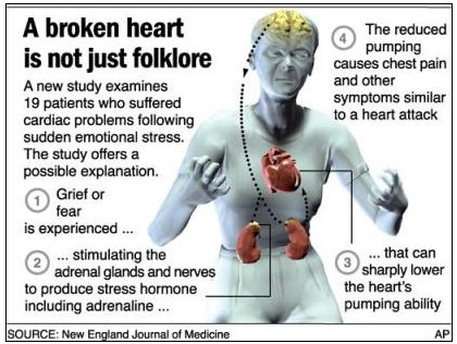 The Science Of The Broken Heart