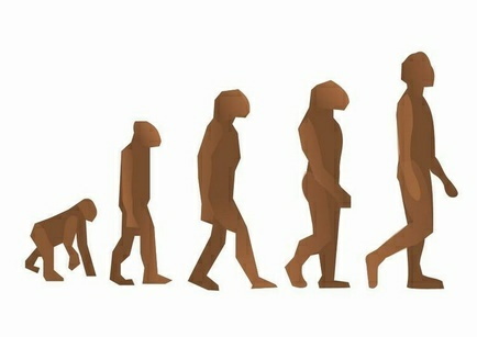 Why Do Random Walks In Evolution Lead To The Same Place?