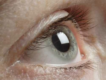 Implanted chip allows blind people to 'see'