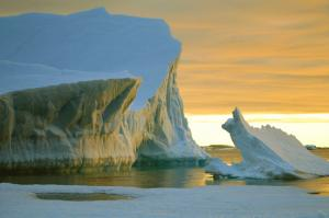 Break-up Of Antarctic Ice May Expose Marine Life To More Sunlight And Alter Food Chain